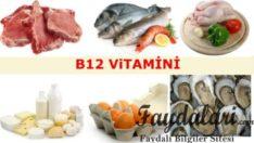 B12 Vitamini Faydaları