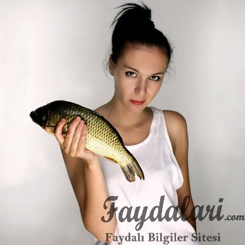 Kemik Erimesine Karşı Balık Yiyin