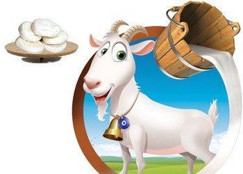 Keçi Sütü Ve Peynirinin Faydaları