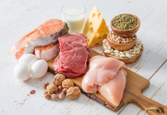 proteinin faydasi