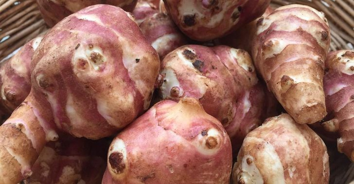 Yer elmasının faydaları ve yan etkileri