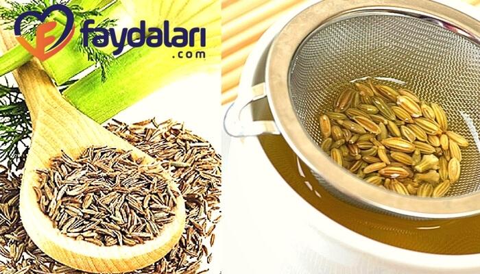 Rezene çayının faydaları ve zararları neler?