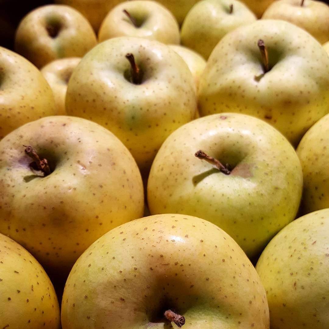 Hergün 1 Elma 3 Ceviz Tüketin