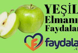 yesil-elmanin-faydalari-1