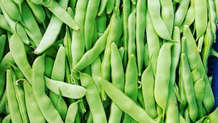 Yeşil fasulyenin faydaları ve zararları