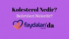 Kolesterol Belirtileri Nedir