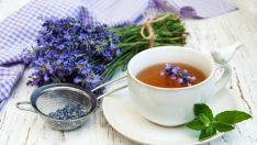 Lavanta Çayının Faydaları