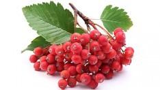 Üvez Meyvesinin Faydaları