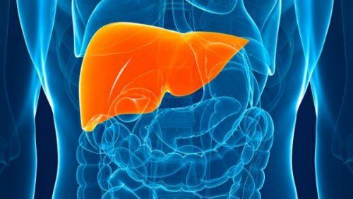 karaciğer kanseri riskleri